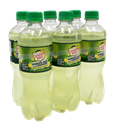 Canada Dry Ginger Ale and Lemonade 6Pk