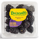 Driscoll&#39s Blackberries